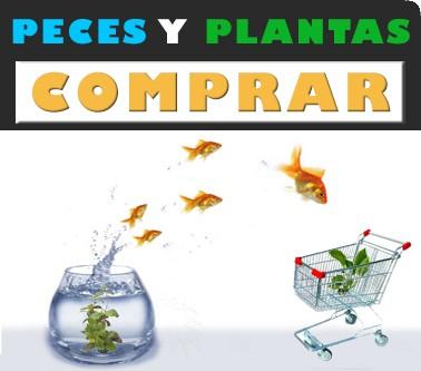venta online de peces y plantas