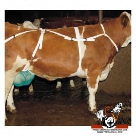 Sosten para ubres de vacas