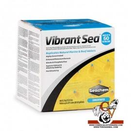 sal Seacheme Vibrant salt