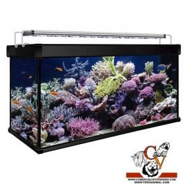 kit Acuario Aqua Lux Pro Marino 200 litros