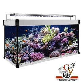 kit Acuario Aqua Lux Pro Marino 300 litros