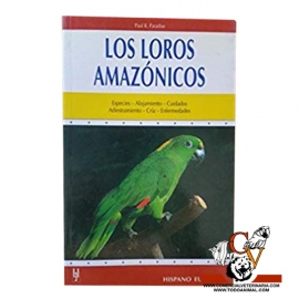 Los Loros amazónico