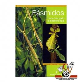 Fásmidos, Insectos palo e insectos hoja