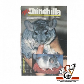 Mi chinchilla