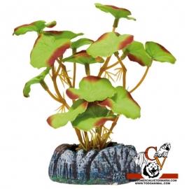 Planta de seda Nenúfar