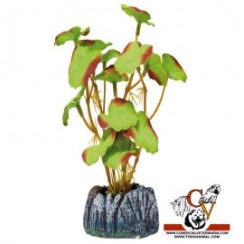 Planta de seda Nenúfar grande