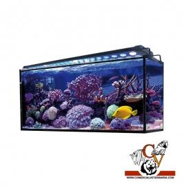 Acuario marino AQUA OCEAN Hydra 180 l.