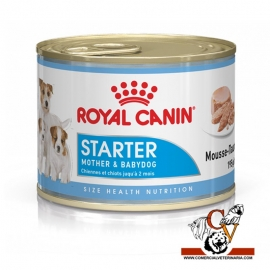 Starter Mousse perro Royal Canin