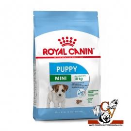Mini Junior Royal Canin