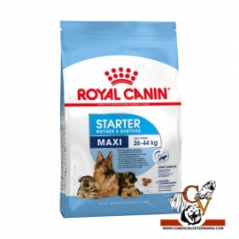 Maxi puppy Royal Canin