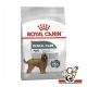 Maxi Dental Care Royal Canin