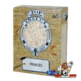 Gusanos Pinkies Congelados 1 Litro