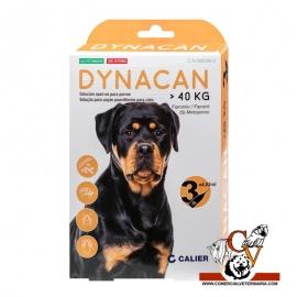 Dynacan perro de + 40Kg 402mg/361,8mg