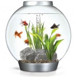 acuario-biorb-60-litros