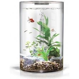acuario-biube-pure-35-litros