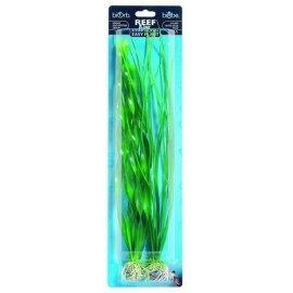 easy-plant-verde-grande