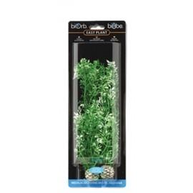easy-plant-flores-invernales-mediana