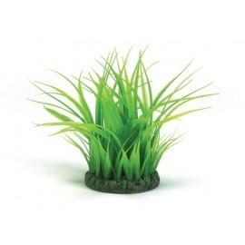 anillo-de-hierba-pequeno