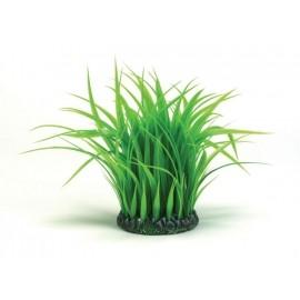 anillo-de-hierba-mediano