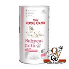 Babycat milk ROYAL CANIN