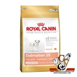 Dálmata Junior Royal Canin