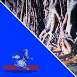 Fondo Raices/Azul