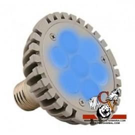 Aquasunspot Blue 7 X 1 7W