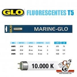 Fluorescente MARINE-GLO T5