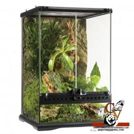 Terrario de cristal Mini - Alto