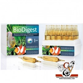 BioDigest bacterias