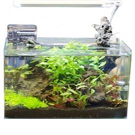 KIT Aquarium Cubic 80l