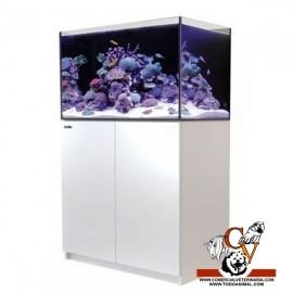 Acuario Reefer 250