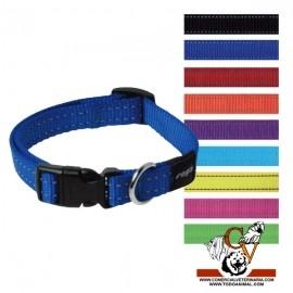 Collar Snake 26-40cm