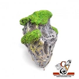 Roca flotante pequeña