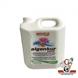 Amtra algenkur pond