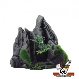 MAGIC ROCKS MOUNTAIN C1
