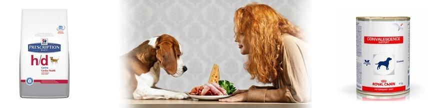 Dieta veterinaria perros