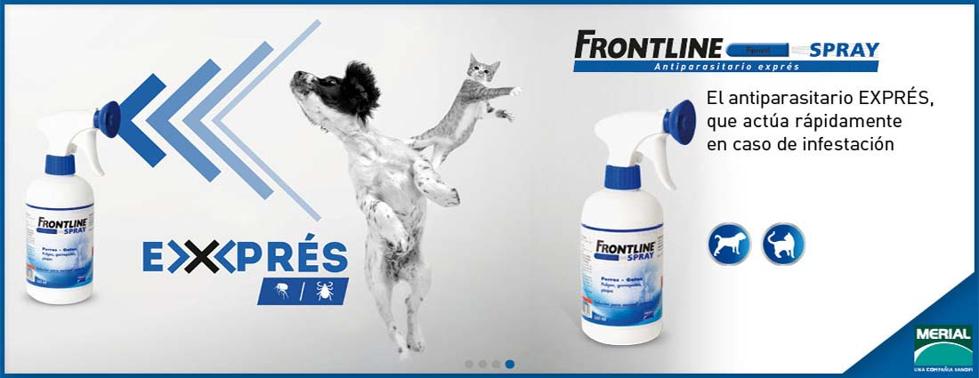 Frontline spray gatos y perros