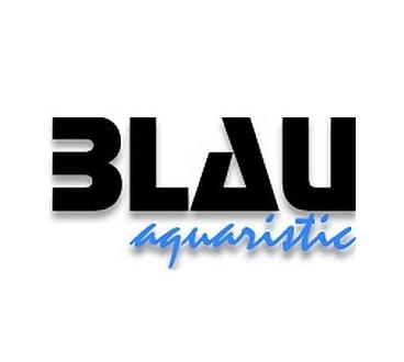 Acuario Cubic Aquascaping