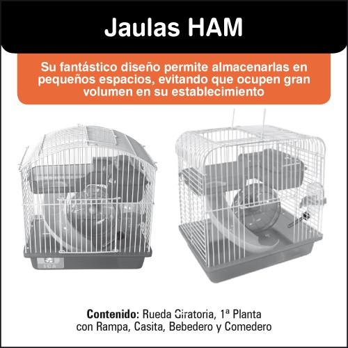 HAM16.jpg